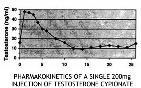 pharmakokinetics of a single 200mg testosterone