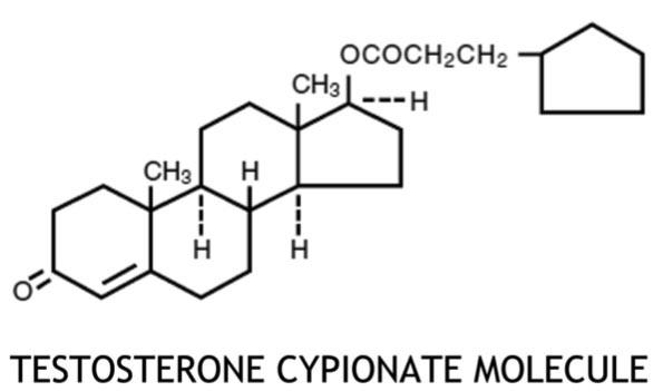 testosterone cypionate molecule